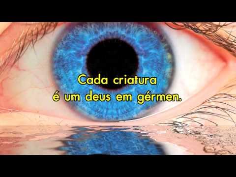 Revérberos no Infinito. (HD)