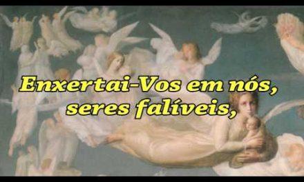 """""""Ave Maria"""" – Vídeo com a Prece Tradicional, na Versão Atualizada pela Mestra Espiritual Eugênia (psicografia de Benjamin de Aguiar)."""