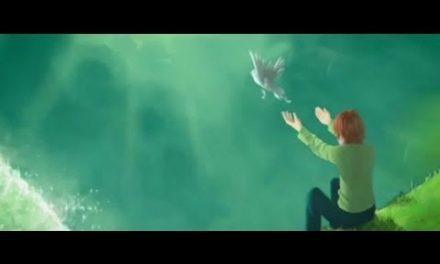 Despertar para a vida – versão em vídeo.