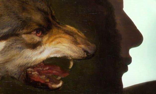 Encantadores(as)  lobos(as)