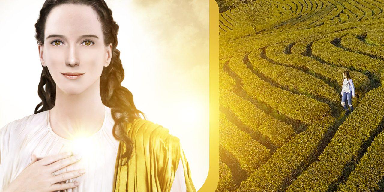 A dama do labirinto