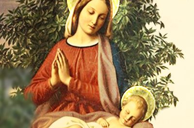Assustadora profecia de Nossa Senhora – Ainda há tempo de evitar o pior… (banner 1)