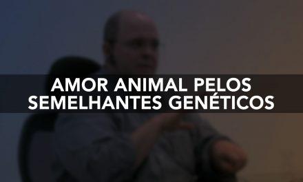Amor animal pelos semelhantes genéticos.