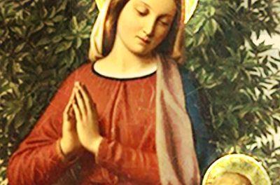 Assustadora profecia de Nossa Senhora (banner)