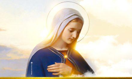 Venha entregar sua carta pessoal a MARIA Cristo
