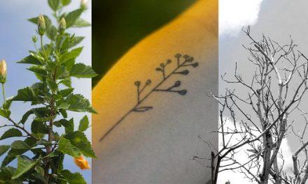 Tatuagem e mudanças