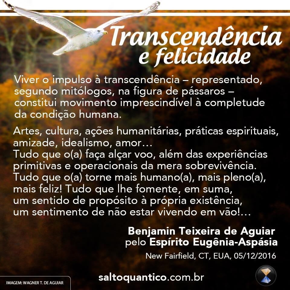 Transcendência e felicidade