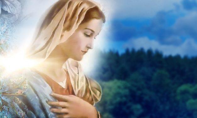 Iniciativa emergencial de Nossa Senhora