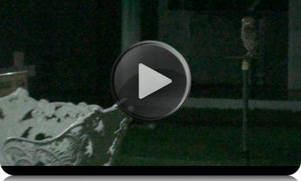 Sincronicidade Interessantíssima, após Benjamin Teixeira Haver Travado o Diálogo Postado Logo Acima, com o Espírito Eugênia (com comentários do próprio Benjamin, em gravação de áudio de 6 minutos, sobre o vídeo de apenas 20 segundos).