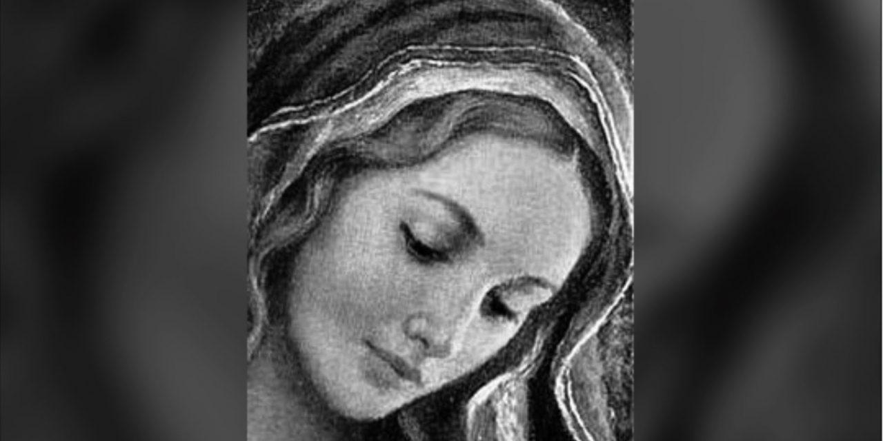 Maria Santíssima nos EUA e a redenção dos pecados