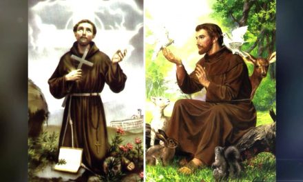 A santidade de Francisco de Assis.