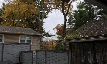 Outono nos EUA…