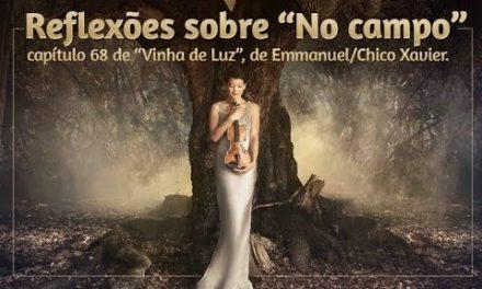 "Reflexões sobre ""No campo"", capítulo 68 de ""Vinha de Luz"", de Emmanuel/Chico Xavier."